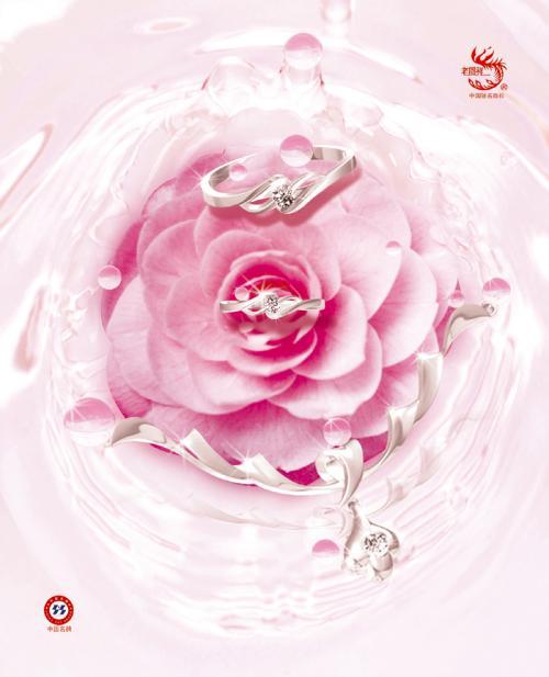 玫瑰花的葬礼【三】