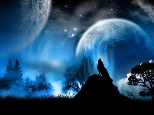孤狼啸月高清壁纸