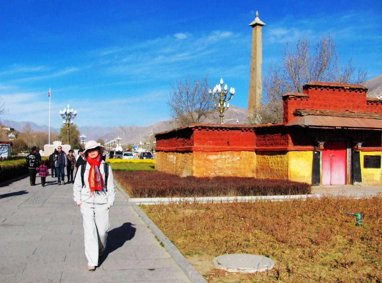 西藏农村房屋图片.